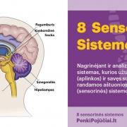 Aštuonios sensorinės sistemos