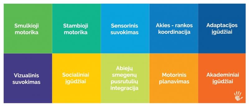 Sensorinės raidos sritys
